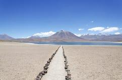 Laguna Miscanti met Volcan Miniques stock afbeeldingen