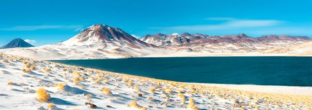 Miscanti Lagoon and Miscanti hill in the Altiplano High Andean Plateau at an altitude of royalty free stock photo