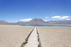 Laguna Miscanti with Volcan Miniques Stock Images