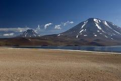 Laguna Miscanti w Wysokich Andes górach w Atacama Deser Zdjęcie Stock