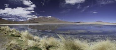 Laguna o lago nel panorama delle Ande Bolivia immagini stock libere da diritti