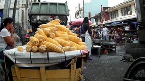 Market Garbage Dump beside corn stall. Laguna, Philippines – July 18, 2015: Corn sold on the street beside Garbage dump area in the market stock video footage