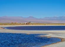 Salar de Atacama in Chile. Laguna Piedra, Salar de Atacama, Antofagasta Region, Chile royalty free stock photography