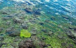 Laguna Royalty Free Stock Photos