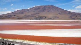 Laguna rossa, Bolivia fotografia stock