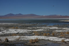 Laguna Salada landscape Royalty Free Stock Photos