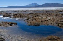 Laguna Salinas Blanca. And volcano Ubinas at the Altiplano in South Peru Royalty Free Stock Photos