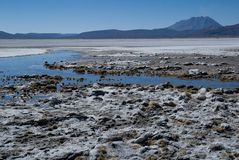 Laguna Salinas Blanca Royalty Free Stock Photo