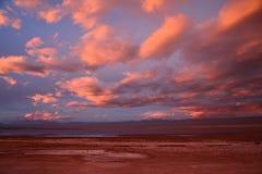 Laguna Tebenquiche San Pedro de Atacama Desert Chile royalty-vrije stock foto