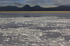 Laguna Tebinquiche nahe San Pedro de Atacama Stockfoto