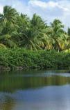 Laguna tropical Stock Photography
