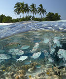 Laguna tropicale nei Maldives immagine stock libera da diritti