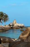 Laguna turtles in Thailand Royalty Free Stock Image