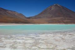 Laguna Verde запас андийской фауны eduardo avaroa национальный bolivians Стоковая Фотография