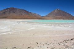 Laguna Verde запас андийской фауны eduardo avaroa национальный bolivians Стоковая Фотография RF