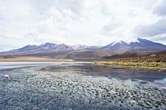 Laguna Verde Bolívia Fotos de Stock Royalty Free
