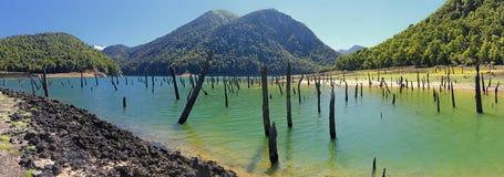 Laguna Verde em Conguillio N P & x28; Chile& x29; Fotografia de Stock Royalty Free