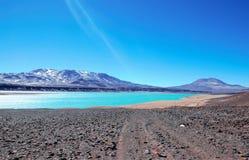 Laguna Verde i Chile Arkivfoto