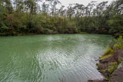 Laguna Verde nära Puerto Varas, Chile Royaltyfria Bilder