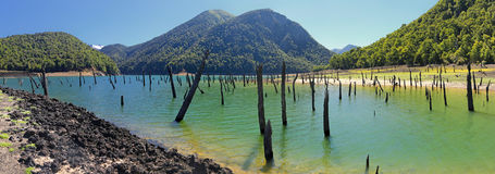 Laguna Verde przy Conguillio N P & x28; Chile& x29; Fotografia Royalty Free