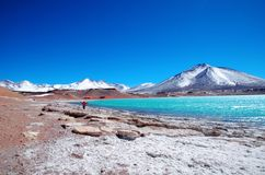 Laguna Verde w Chile Obrazy Royalty Free