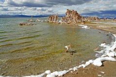 Laguna w Mono jeziorze, CA obrazy royalty free
