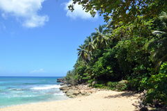 Laguna and wild coast Royalty Free Stock Photos