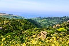 Laguna wzgórza obrazy stock
