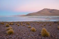 Laguna y volcán en la meseta Altiplano, Bolivia fotografía de archivo libre de regalías