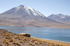 Lagunas. Miscanti and Meniques in Atacama desert near Andes Stock Photography