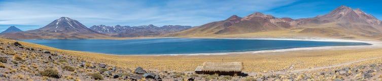 Lagunas Altiplanicas, Panoramiczny widok, Miscanti y Miniques Zdjęcie Stock