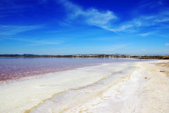 Lagunas de la Mata y Torrevieja Natural Park. Salt lake near Torrevieja, Spain. Water looks pink and salt crystals are on the shore Stock Images