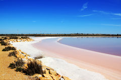 Lagunas de la Mata y Torrevieja Natural Park. Salt lake near Torrevieja, Spain. Water looks pink and salt crystals are on the shore Stock Image