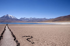 Lagunas Miscanti and Meniques. In Atacama desert near Andes Royalty Free Stock Photography