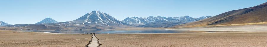 Lagunas Miscanti och Meniques i den Atacama öknen Royaltyfria Foton