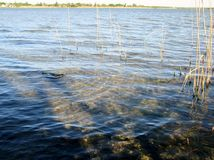 lagune Royalty-vrije Stock Foto