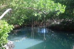 lagune Stockfotos