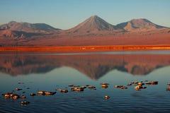 Lagune chilienne avec le volcan sur le dos Photo libre de droits