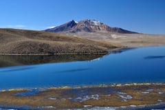Lagune Chungara Image stock
