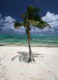 Lagune d'îles Cook Photo stock
