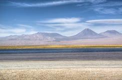 Lagune in de Atacama-woestijn Stock Foto's
