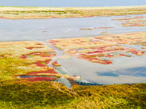 Lagune de Budaki, Shabolat Soi-disant «Ukrainien Mesopotamia» Images stock