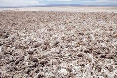 Lagune de Chaxa dans Salar de Atacama, Chili Photos libres de droits