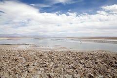 Lagune de Chaxa dans Salar de Atacama, Chili Images libres de droits
