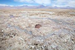 Lagune de Chaxa dans Salar de Atacama, Chili Image stock