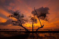 Lagune de Kukud en Thaïlande Images stock