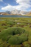 Lagune de Laguna Escondida Photographie stock