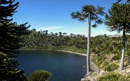 Lagune de mule, bio bio Chili images libres de droits