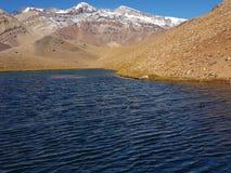 Lagune der Enten in Chile stockbilder