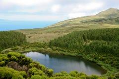 Lagune in eiland Pico Royalty-vrije Stock Afbeelding